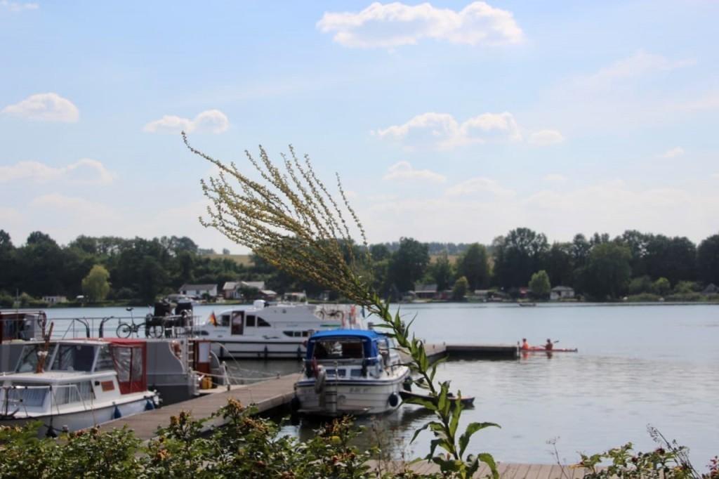 Stadtsee Lychen