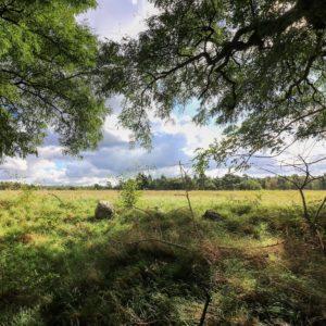 naturparkfuehrungen-uckermark-1