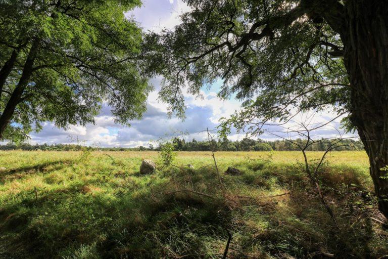 naturparkfuehrungen uckermark 1 768x512